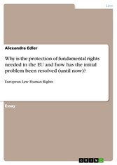 Why is the protection of fundamental rights needed in the EU and how has the initial problem been resolved (until now)? European Law Human Rights
