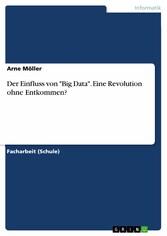 Der Einfluss von 'Big Data'. Eine Revolution ohne Entkommen?
