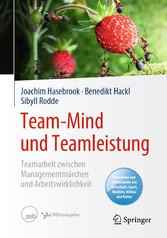 Team-Mind und Teamleistung Teamarbeit zwischen Managementmärchen und Arbeitswirklichkeit