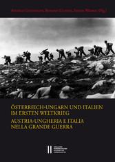 Österreich-Ungarn und Italien im Ersten Weltkrieg. Austria-Ungheria e Italia nella Grande Guerra Abteilung I: Abhandlungen