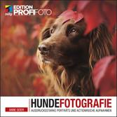 Hundefotografie Ausdrucksstarke Porträts und actionreiche Aufnahmen