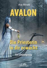 Avalon - Die Priesterin in dir erwacht Ein Schulungsweg