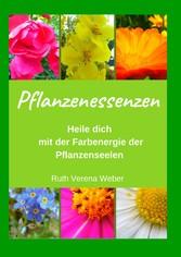 Pflanzenessenzen Heile dich mit der Farbenergie der Pflanzenseelen
