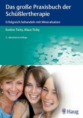 Das große Praxisbuch der Schüßlertherapie Erfolgreich behandeln mit Mineralsalzen