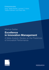 Excellence in Innovation Management A Meta-Analytic Review on the Predictors of Innovation Performance
