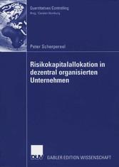 Risikokapitalallokation in dezentral organisierten Unternehmen