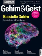 &Geist 9/2020 Baustelle Gehirn So verändert es sich beim Lernen