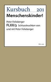 FLXX 3 - Schlussleuchten von und mit Peter Felixberger