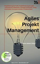 Agiles Projektmanagement & Methoden, Strategie entwickeln, richtig entscheiden, Konzepte erstellen, Probleme lösen