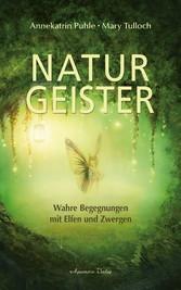 Naturgeister - Wahre Begegnungen mit Elfen und Zwergen