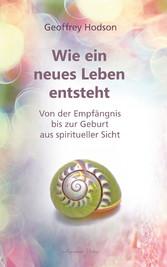 Wie ein neues Leben entsteht: Von der Empfängnis bis zur Geburt aus spiritueller Sicht