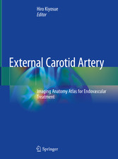 External Carotid Artery Imaging Anatomy Atlas for Endovascular Treatment