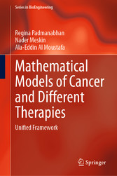 Mathematical Models of Cancer and Different  Therapies Unified Framework